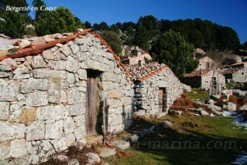 Bergerie en Corse du sud Porto vecchio