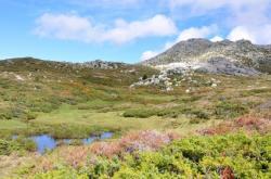 Plateau cuscionu